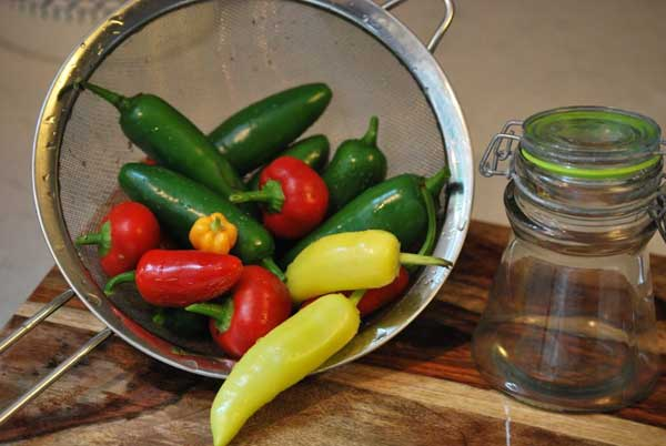 How to Pickle Hot Peppers