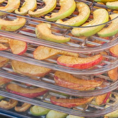 Best Food Dehydrator: Top 7 Picks