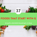 Foods that Begin with G