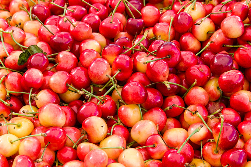 Pile of queen anne cherries on display in a farmer's market