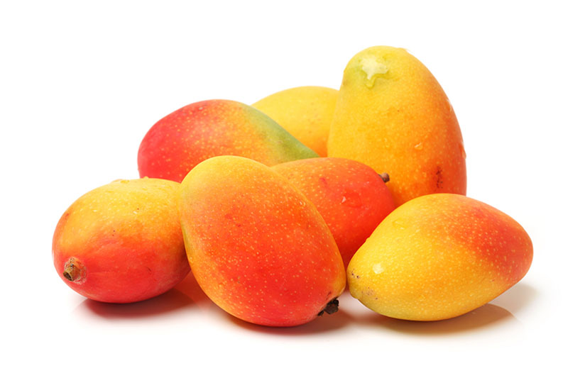 Bunch of fascell mangoes isolated on white background